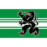 Vlag East Flanders flag