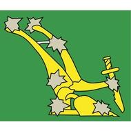 Vlag Starry Plough original