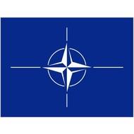 Vlag NATO NAVO vlag