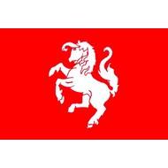 Vlag FC Twente Supporters vlaggenpakket