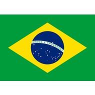 Vlag Brazil flag