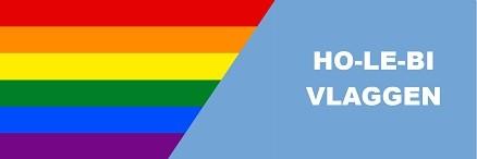 Regenboog en Holebi vlaggen