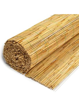 TuinChamp Reed fence 8 mm 160 x 600 cm