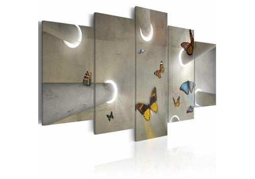 Schilderij - Vlinder serre