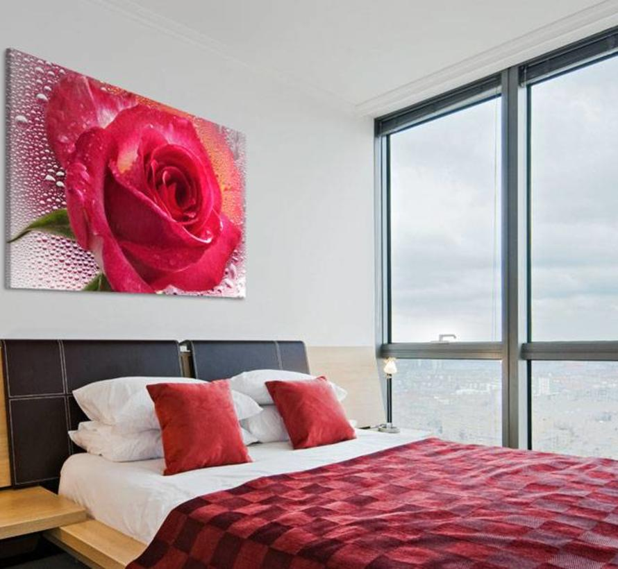 Schilderij -Vrouwelijke roos 60x90