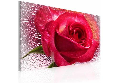 Schilderij -Vrouwelijke roos