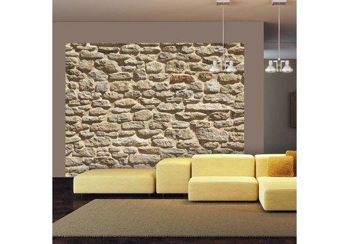 Fotobehang - Oude, stenen muur