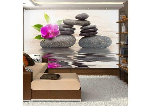 Fotobehang - Orchidee op stenen