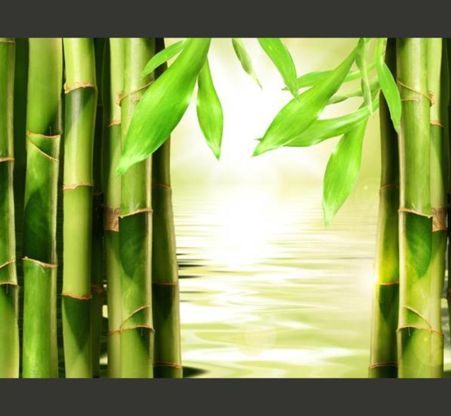 Fotobehang - Bamboe en zen