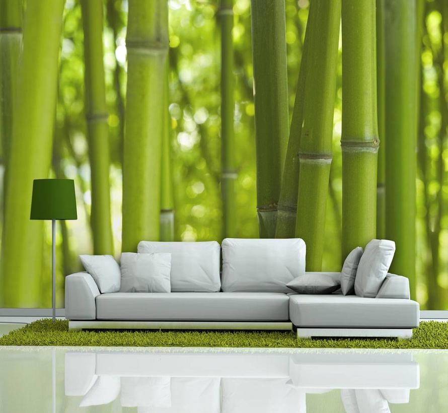 Fotobehang - bamboe - groen