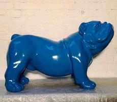 Blauwe polyester bulldog
