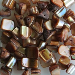 Shell Beads 5-12mm Brown 50 pieces for