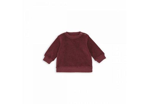 Bonton Baby Sweater Brunette