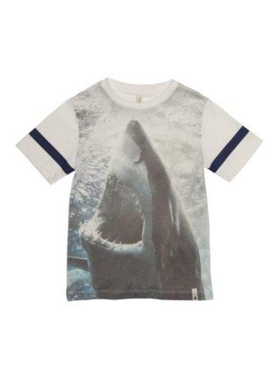 POPUPSHOP Basic SS Tee Shark