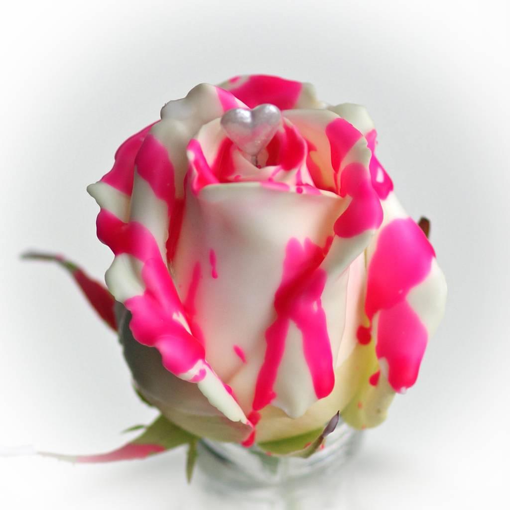 Roseberry-love