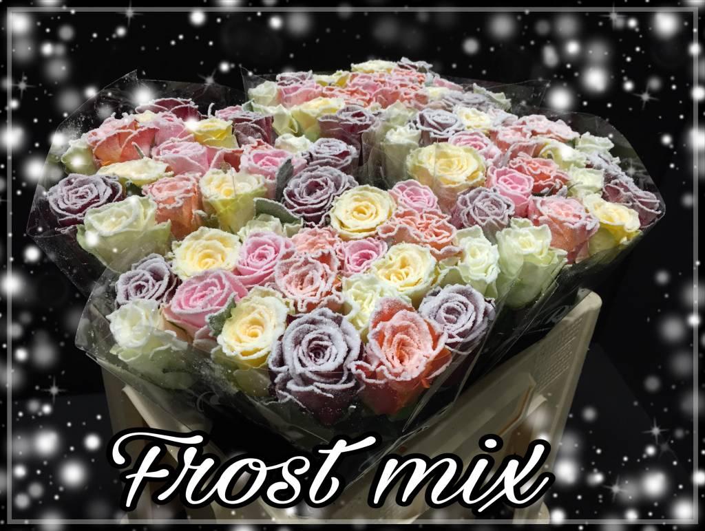 Rozen.nl Frost mix in de bos