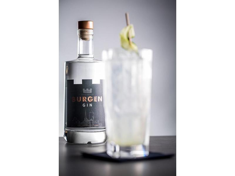 Burgen-Drinks BURGEN GIN handcrafted 45% vol. 0.5 Liter