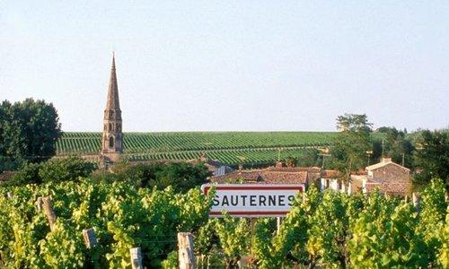 Wat te serveren bij Sauternes wijn?