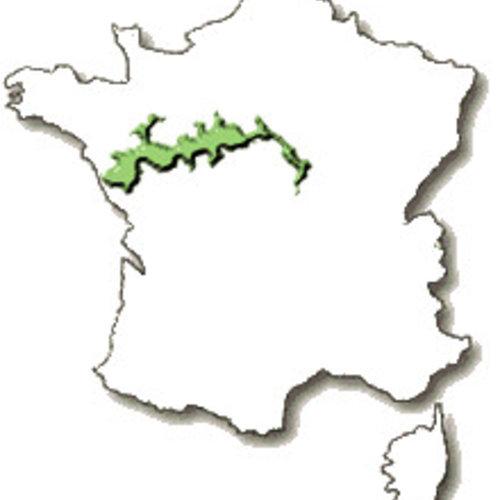 Loire wijnen