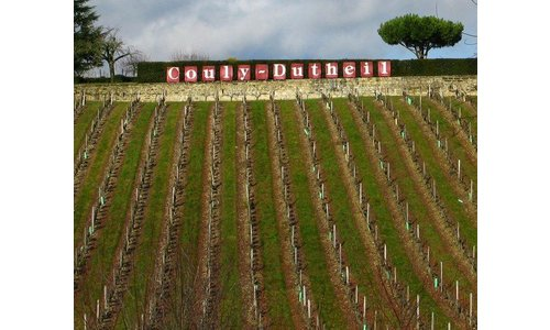 Domaine Couly-Dutheil