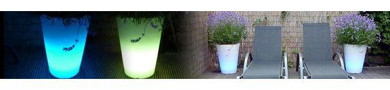 Illuminated Flower Pots