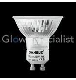 - Omnilux UV / BLACKLIGHT OMNILUX GU10 - 230V - 60 LED