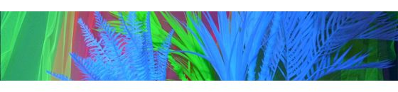UV Planten