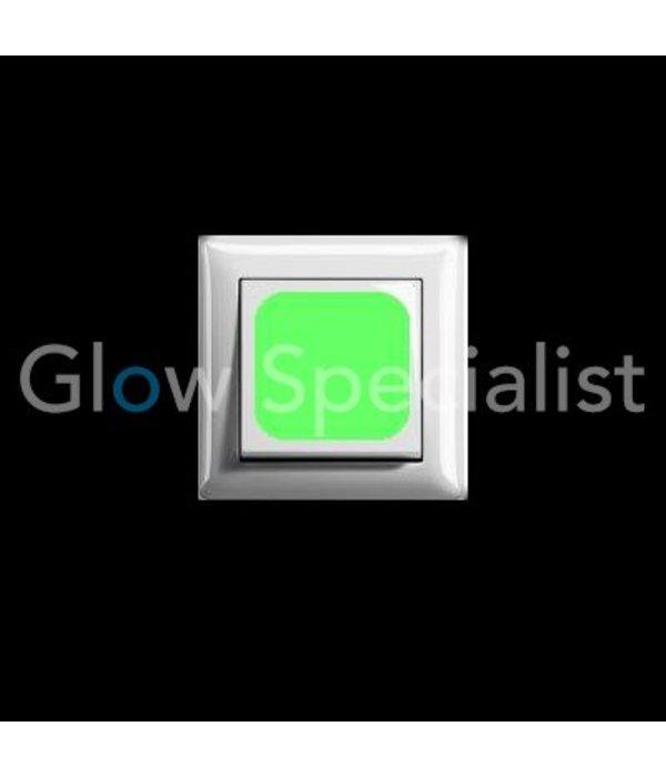 GLOW IN THE DARK LIGHT SWITCH STICKER