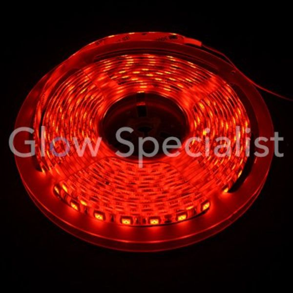 LED STRIP RED IP 65 - 24V - 5 METER