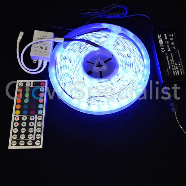 LEDSTRIP RGB - 24V - 5 METERS - INCL. CONTROLLER