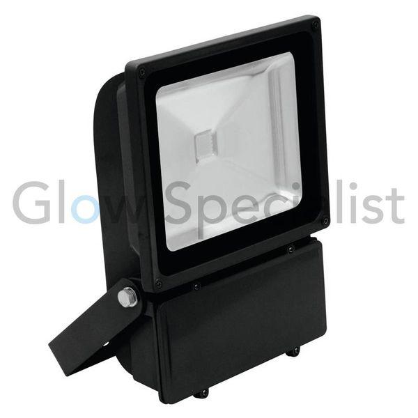 LED UV - BLACKLIGHT - 395NM - 60 WATT COB FLOODLIGHT - High Quality