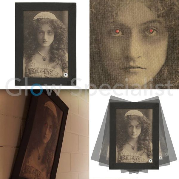 HALLOWEEN ANIMATED HAUNTED FRAME - WITH LIGHT AND SOUND