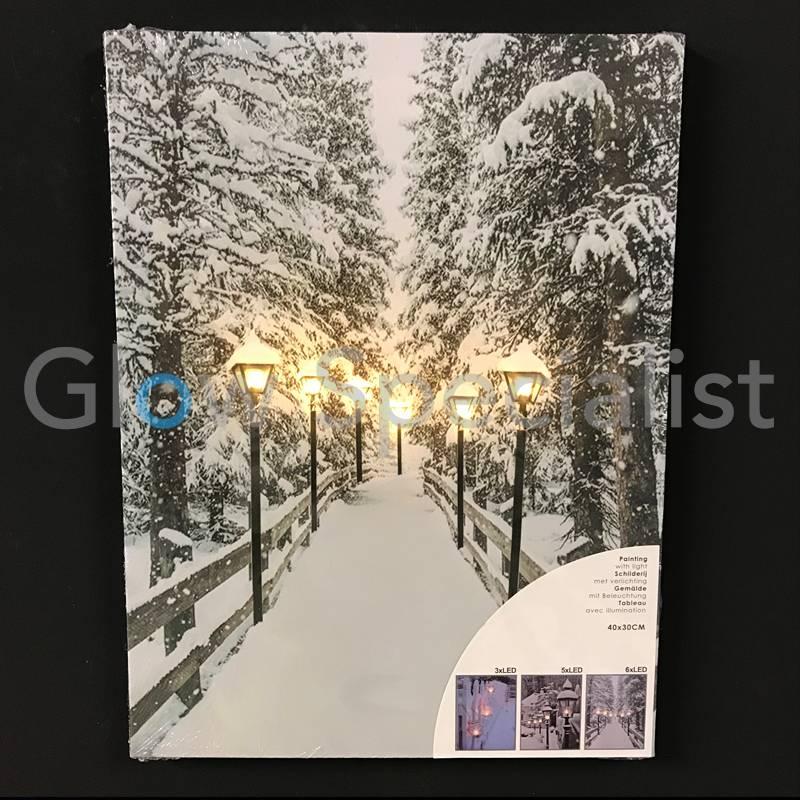 canvas schilderij met led 40 x 30cm 6 led