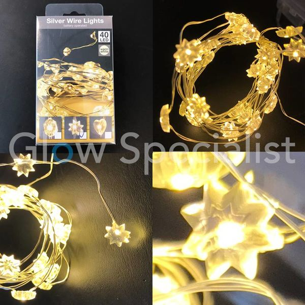 SILVER WIRE LIGHT - 40 FLOWER LEDS - WARM WHITE