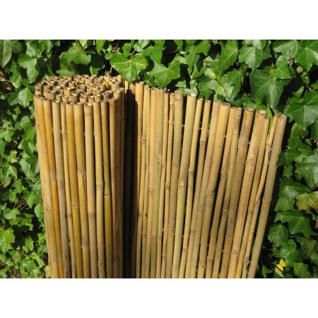 Bamboe rolscherm Dalian | 25mm
