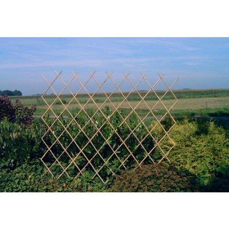 Bamboe Trellis | Harmonica