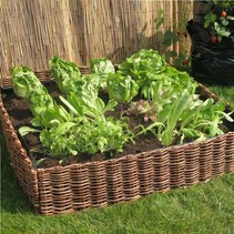 Wilgen kweekbak | 100x100x25 | inclusief plantenzak