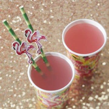 Ginger Ray Flamingo Fun Bamboo Rietjes - 20 stuks