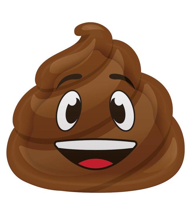 Creative Party Poop Emoji Borden - 8 stuks - 23 cm