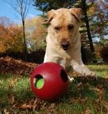 Jolly Teaser Ball
