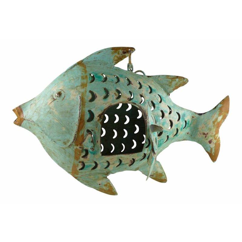Fischwindlicht helltürkis