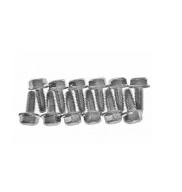 General motor/ GM Bolts Kit: timing cover (10-35366 / 10-35366 / 3852441 / 955512)