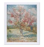 Reproductie 'Roze perzikbomen (Souvenir de Mauve)' - Vincent van Gogh