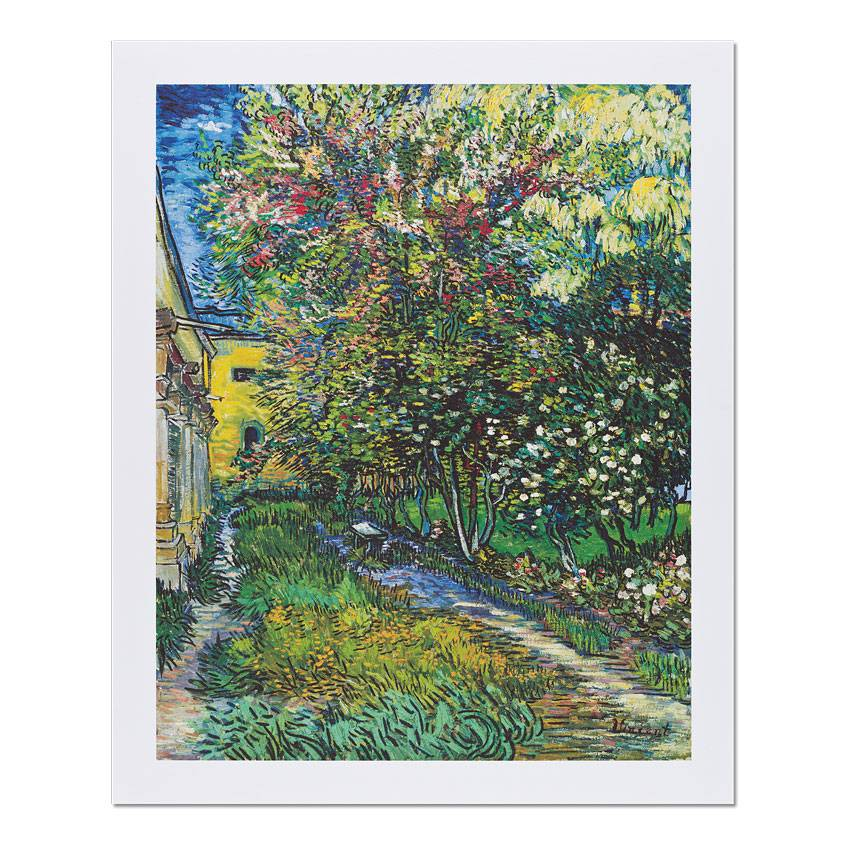 Reproduction 'The Garden of the Asylum at Saint-Rémy' - Vincent van Gogh