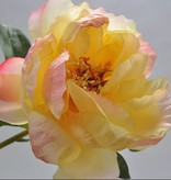 Zijden pioen roos geel met roze randje