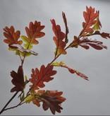 Zijden eikenblad tak