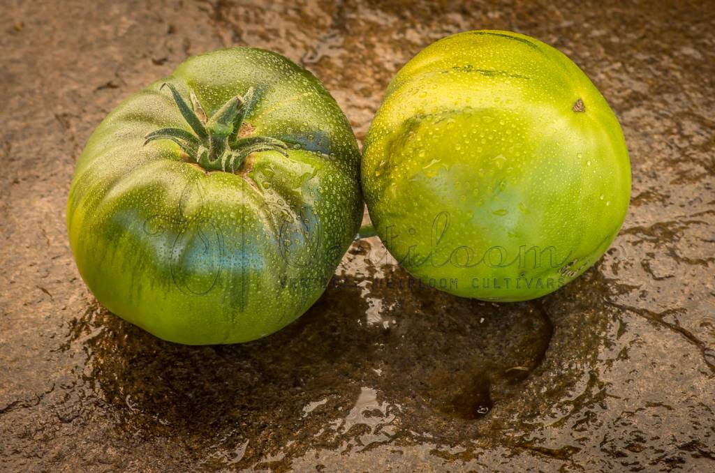 Quapaw Green