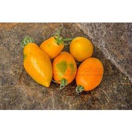 Orange Caprese