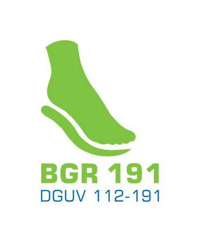 DGUV / BGR 191