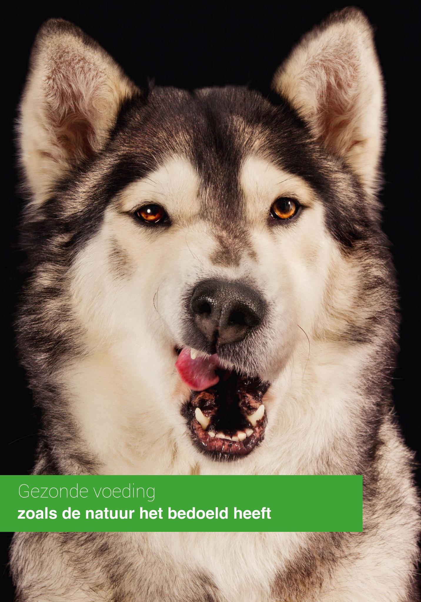 Natuurlijk gezonde hondenvoeding
